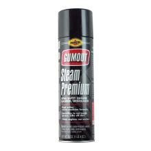 Pennzoil Gumout Steam Premium Engine Degreaser 20 oz